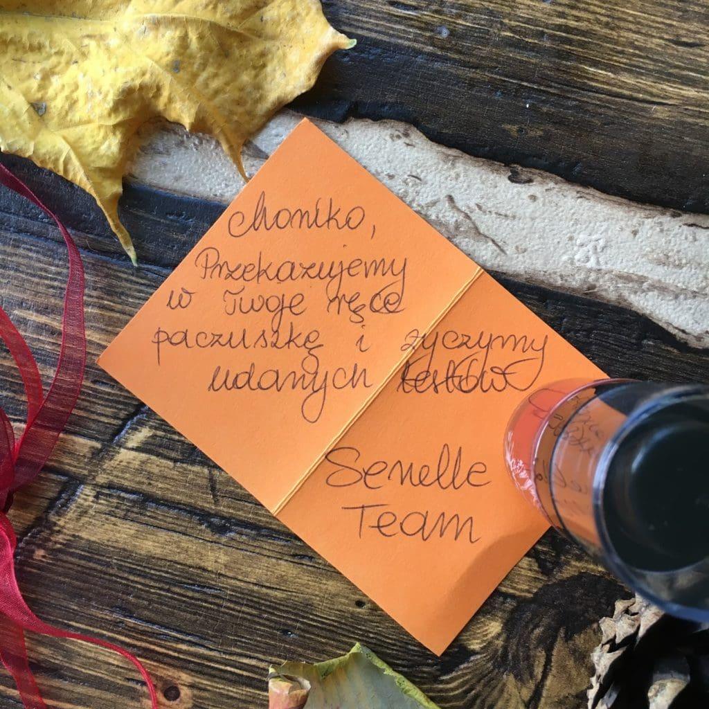 Senelle Cosmetics Summer & Autumn, czyli coś z letniej i jesiennej linii marki.